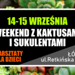 WEEKEND Z SUKULENTAMI