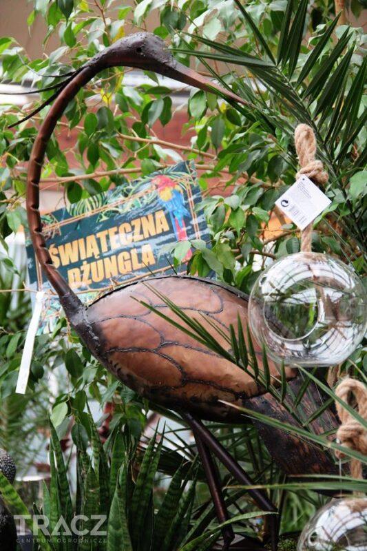 świąteczna dżungla, dekoracje bożonarodzeniowe