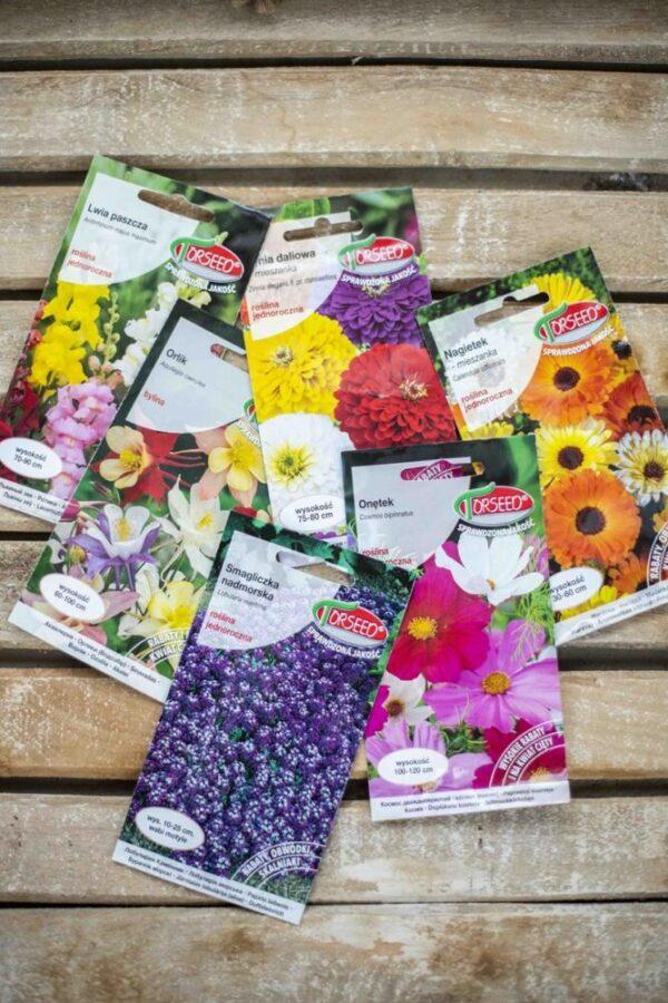 Zestaw nasion kwiatów miododajnych, kwietna łąka, sprzyjamy pszczołom